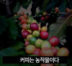 커피는 농작물이다.jpg